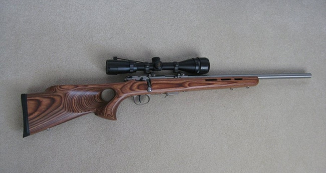 The Best Scopes for 17 HMR in 2021