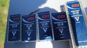 Best Places to Buy Cheap 22LR Ammo  Online (High Quality)