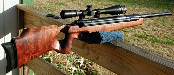 The Best Scopes for Air Rifles in 2021